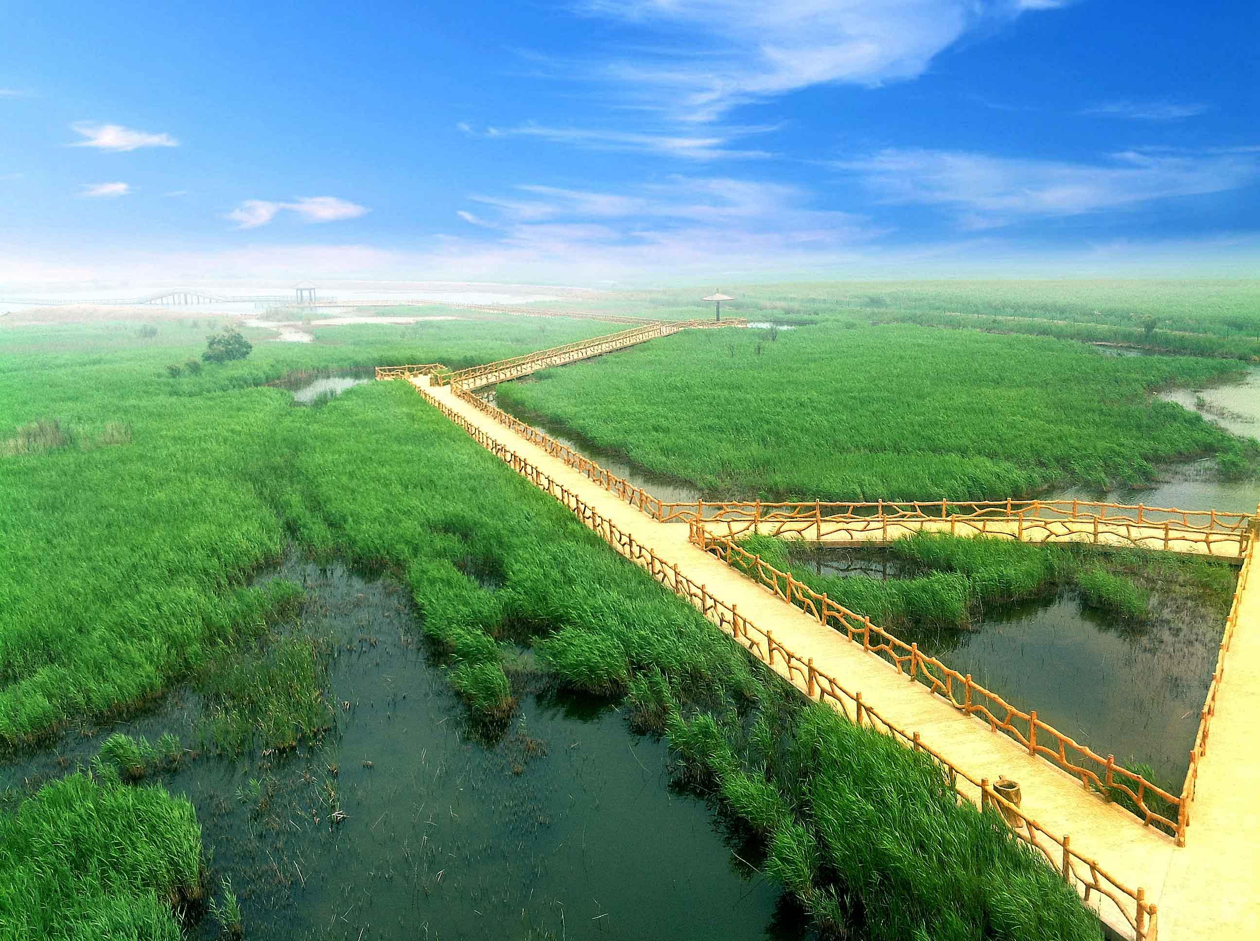盤點黃河口生态旅遊區适合遊客遊玩的景點