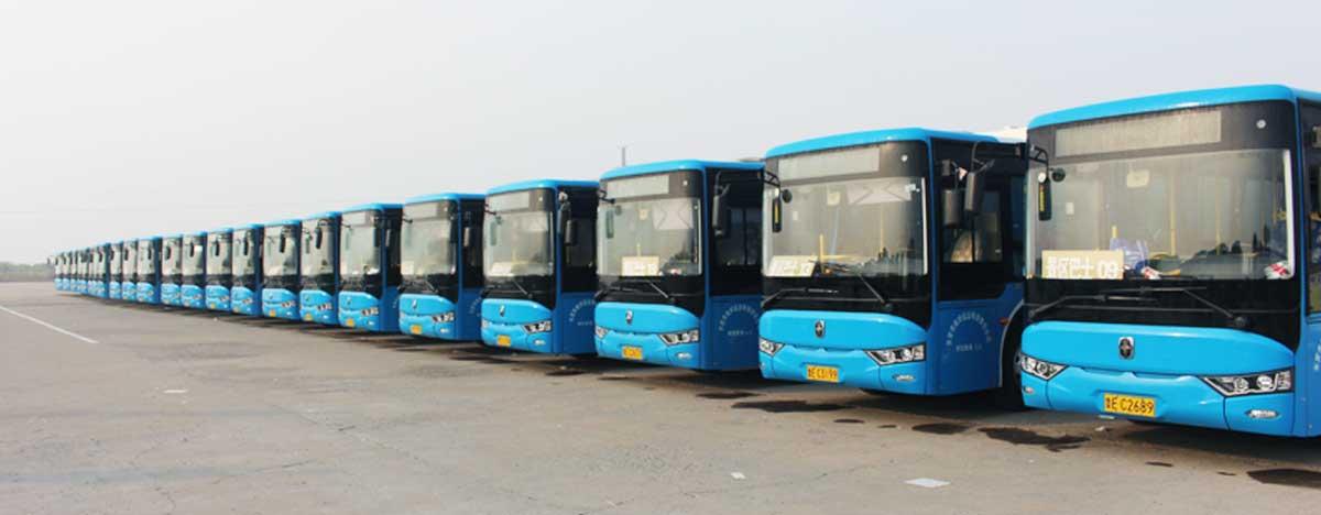 景区巴士路线